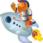 هاست لینوکس حرفه ای