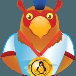 سرور مجازی لینوکس OpenVZ ایران