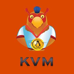 سرور مجازی لینوکس KVM آمریکا